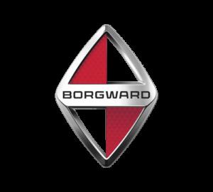 Reprogrammation moteur Borgward